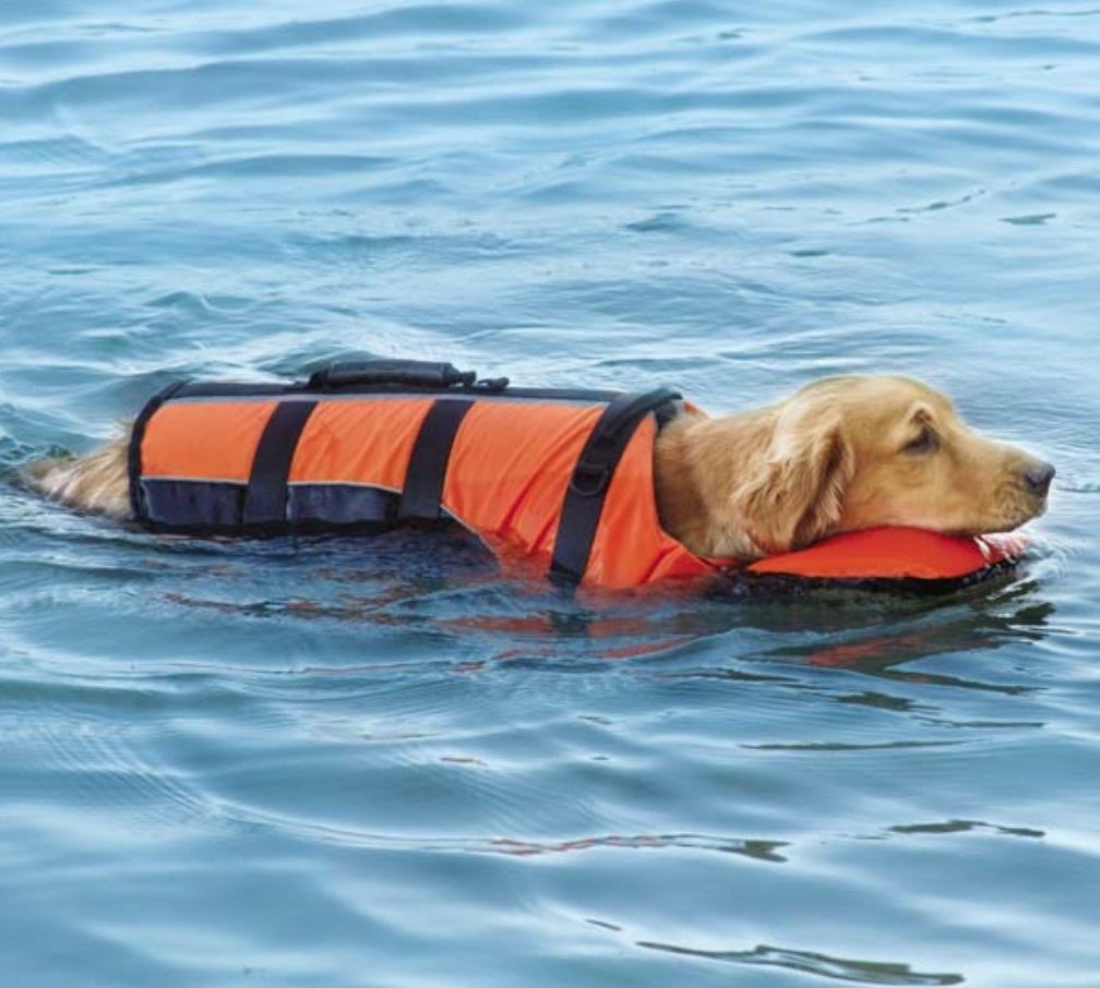 best life jacket for pets and dogs